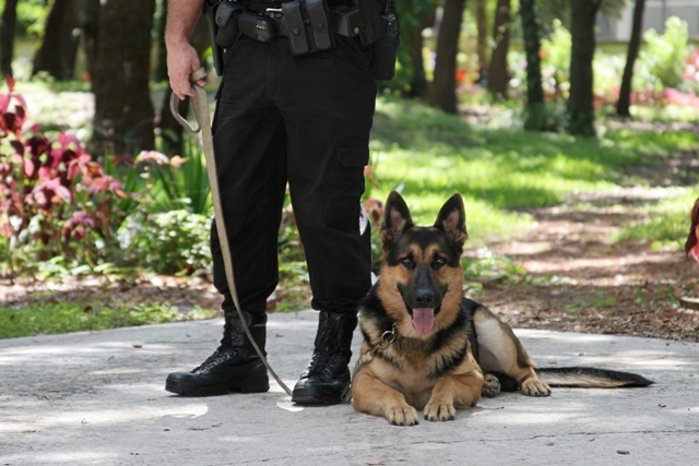 Policía Nacional Cambio Requisitos