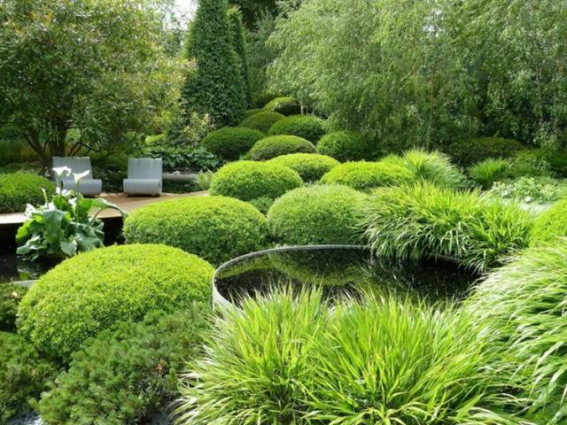 curso diseño y conservacion jardines