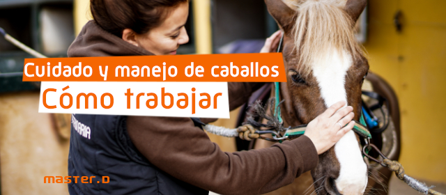 trabajo con caballos