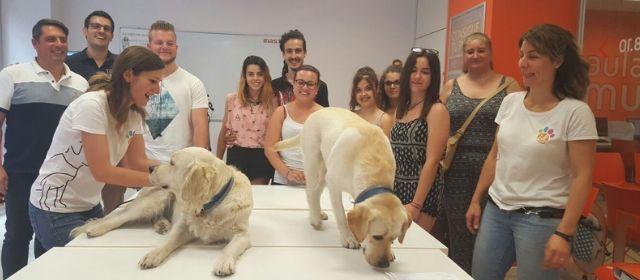 Cursos para trabajar con animales