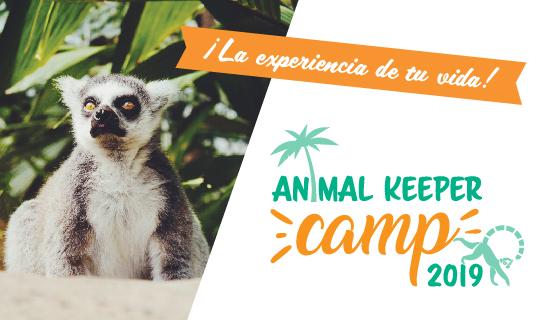 Campamento cuidadores zoológicos