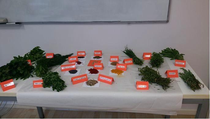 Opiniones masterd valencia sobre los cursos de cocina - Curso cocina valencia ...