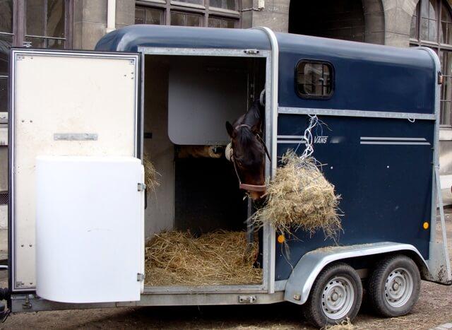 transporte de caballos en remolque