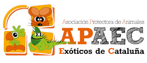 APAEC_Barcelona
