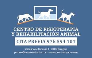 Centro de fisioterapia y rehabilitación animal