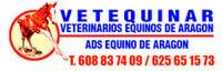 Veterinarios Equinos de Aragón