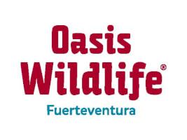 oasis nuevo logo