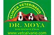 Clínica Veterinaria Moya