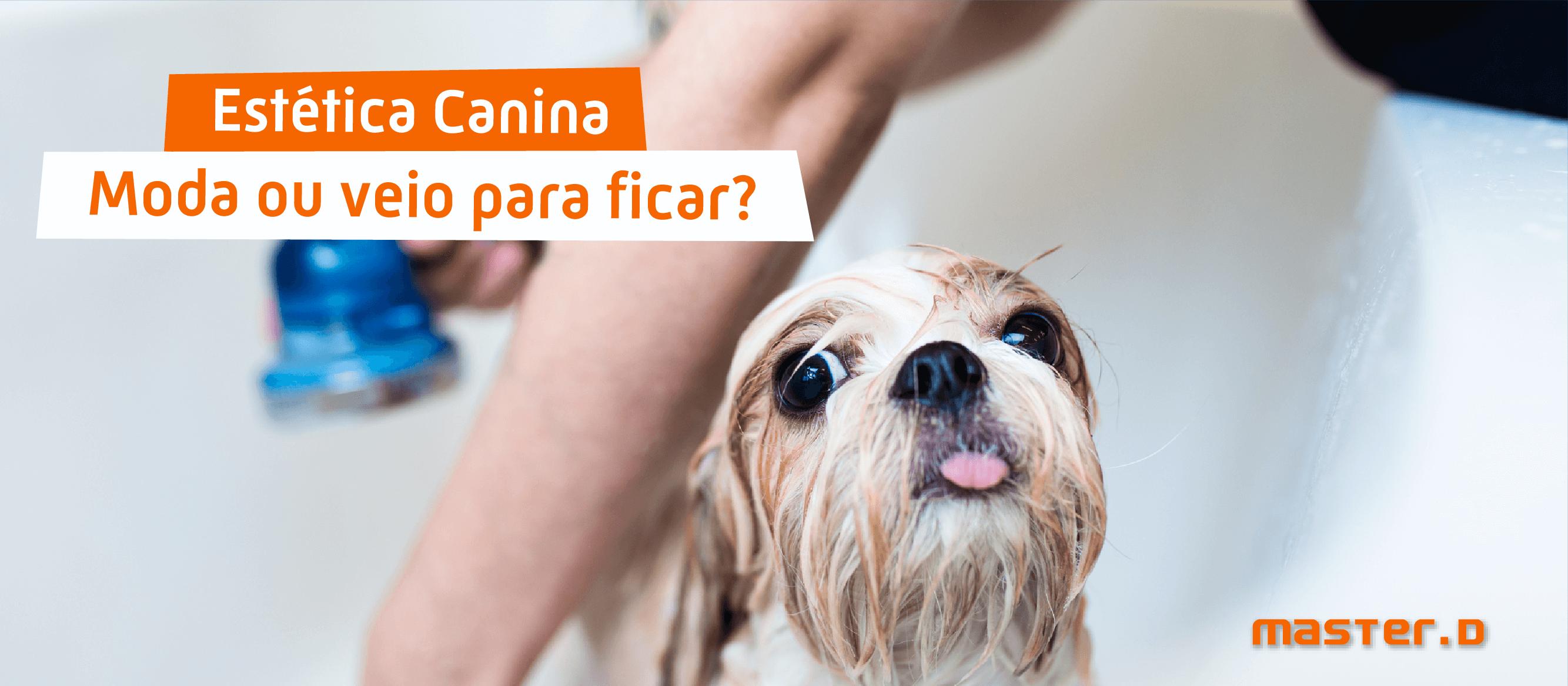 Formaçao Estetica Canina