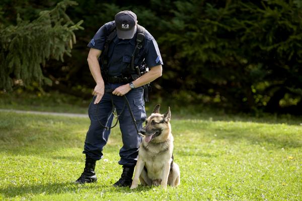 Polícia com cão