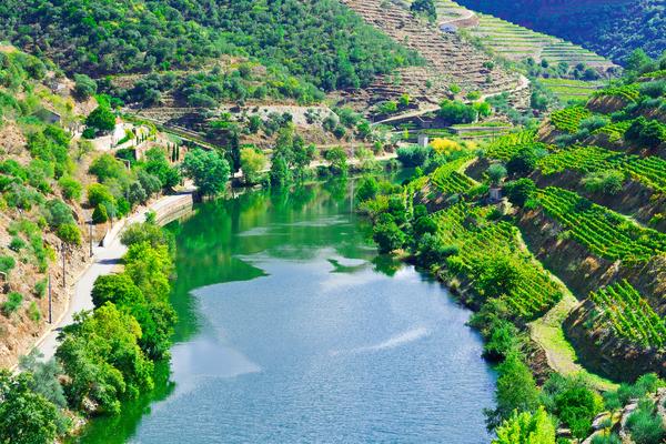 A Região Demarcada dos Vinhos Verdes situa-se entre o Douro e o Minho.