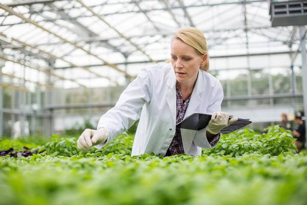 As empresas agrícolas estão já a tirar o máximo partido da inovação do sector