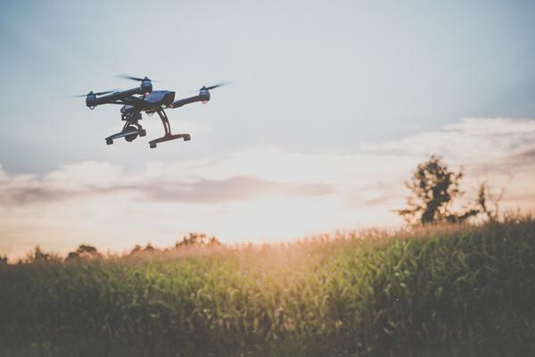 A tecnologia aliou-se ao sector agrícola para que as empresas produzam mais e melhor.