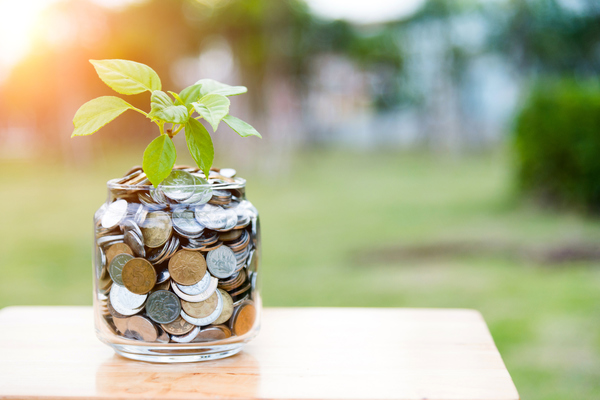 Planta a crescer dentro de um pote com moedas - fundo de investimento a empresas agrícolas