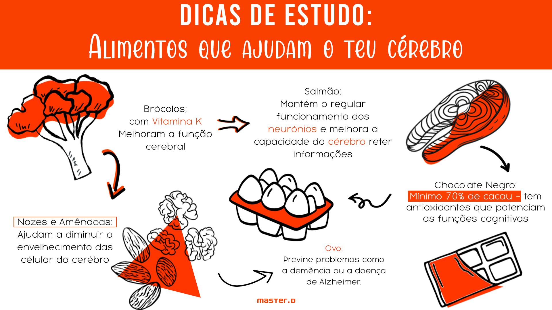 Dicas de estudo: alimentos que ajudam a potenciar o estudo