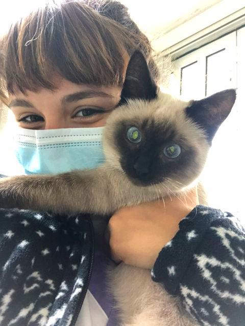Master D Coimbra – Inês Nicolau terminou o estágio numa clínica veterinária