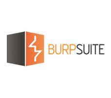 curso burp suite