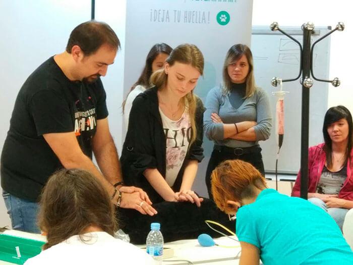 Estudiar Veterinaria Huelva